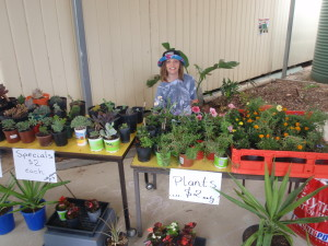 Pop Up Market  our home grown plants